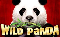 wild panda slot aristocrat